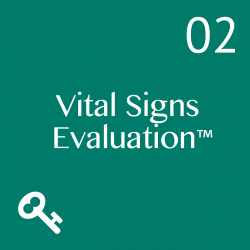 The VS Evaluation compares best practices with your current state in all or part of Leadership and Management, Business Environment, Customer, Direction, Strategy, Operations, Sales, Marketing, Finance, Process, Structure, Roles, Teams, Human Resources and People, and Recommendations.